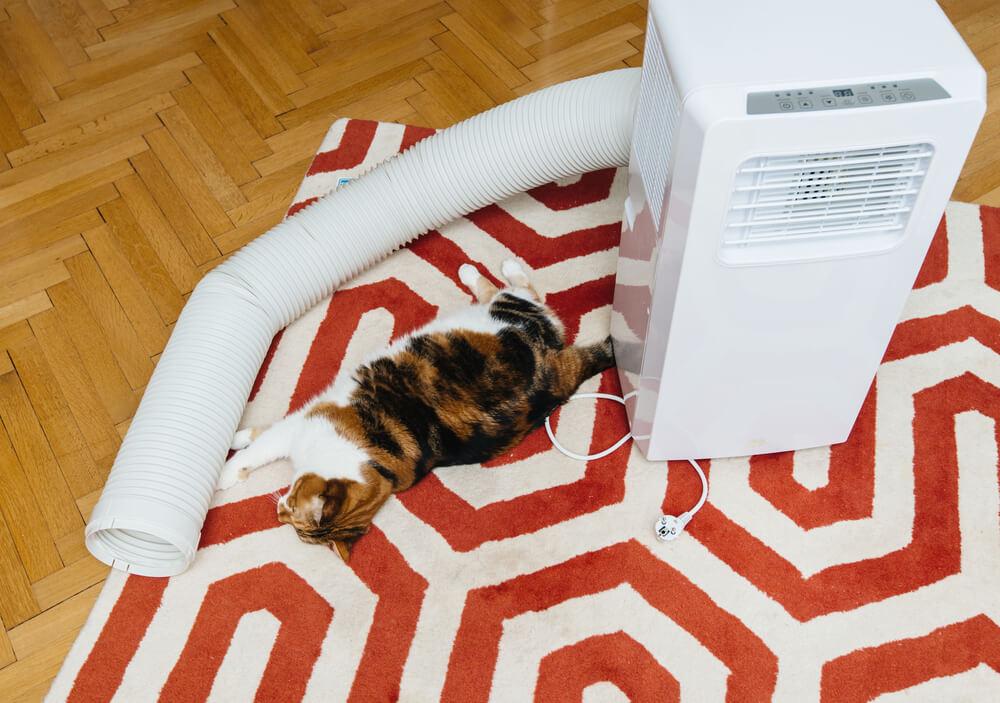 montaz-klimatyzatora-przenosny-rura-kot